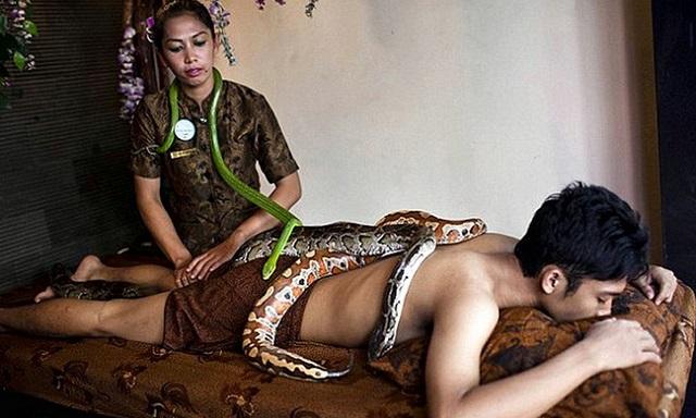 Massazh-zmeyami[1]